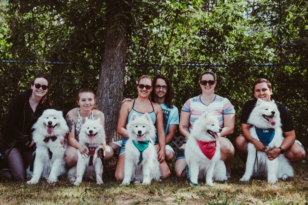 Plusieurs participants de la rencontre de samoyèdes avec leurs chiens