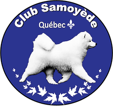 Club Samoyède Québec